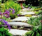 For the Home: Gardens & Outdoor Spaces / Gardening and home decor ideas for outdoor spaces.