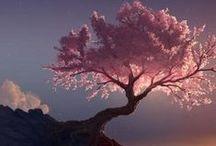 Pink / all shades of pink mood board