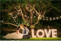 Weddings / by Susan Sanders