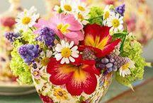 Bloom & Sprout / gardening, gardens, farmer's markets, botanical decor and ideas