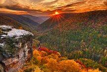 Festive Fall / autumn, fall images, decor, ideas