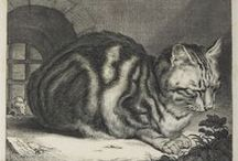 Cats in the Collections / Felines we've spotted in the collections of the Fogg, Busch-Reisinger, and Arthur M. Sackler Museums.  / by Harvard Art Museums