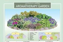 Garden Ideas / So many great garden ideas to get you started on building your own garden design. Time to get gardening!