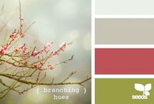 Color Palettes / Inspiring Colors / by Amanda