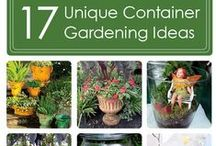 Container Gardening / There are many ways to garden in containers. Here are a few of our favorite container gardening projects.