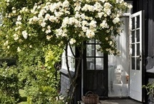 Gardening / by Good Earth Floral Design Studio
