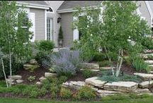 Berm and Mound Landscaping / Creating gardens and landscapes using berms and mounds.