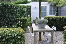 Small Garden / by Chloe Dunne Design