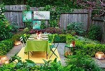 Backyard Entertaining / After you've planted your backyard landscape and it's growing, it's time for a backyard bbq or fall garden party. These ideas and tips will get you started on sharing your beautiful plants with everyone.