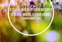 Easter Sunday / He is Risen!