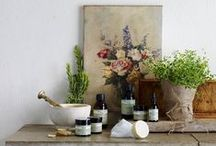 My NYR Shop / A selection of the latest from my online shop and an intro to some of our organic products. Changing the world, one blue bottle at a time. / by My Neal's Yard Remedies Organic