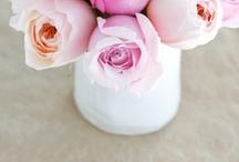 Flower Arrangements / by Renay Toronto