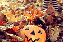 Trick or Treat / by Michelle Serl