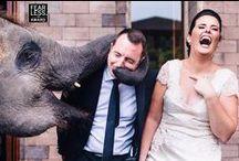 Weddings - LOCATION LOVE