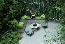 Outdoor living and Plants
