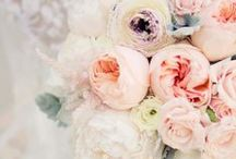 WEDDING DAY   all things lovely / Simply lovely inspiration and ideas for a wide range of items wedding day related. / by Angel Canary