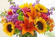 Beautiful Bouquets / by ღ Sharon ღ