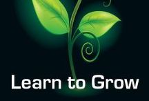 Garden HERBS / Sprout Garden