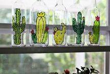 Cactus / A Visual perception of my visual life. Welcome home Sam!