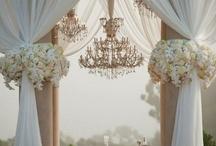 Wedding Planner / by Kristy Ward