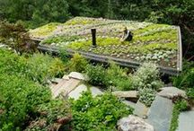 Favorite Places & Spaces / Urban Farms Come In Many Forms / by The Urban Farm