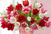 Delightful Floral Displays!