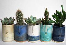 Plantor, växter och trädgårdar / Saker som växer.  Growing plants and gardens.  / by Lisa Grettve