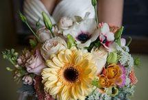 Wedding / by Julianne Ward