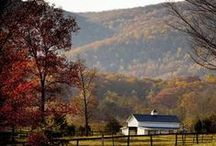 Virginia- My Roots / by Judy Graves