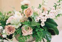 Centerpieces // Wedding Flowers