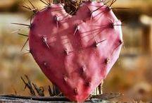 All Heart / by Cheryl Cummings Bagley