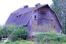 Barns & Sheds / by Cheryl Cummings Bagley
