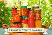 Canning and Preserving Recipes and How-To's