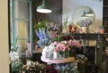 flower room / by Designs by Boo Shi