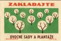 Matchbox labels / by tms
