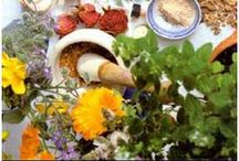 Ayurveda - Pitta Kapha Diet & Recipes