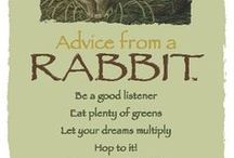 Advice from a Rabbit / Inspiring words and quotes ... I especially love the Advice from a Rabbit available here: http://www.yourtruenature.com/rabbit-frameable-postcard / by Rabbittude Buntique