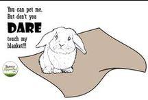 Bunny Cartoons
