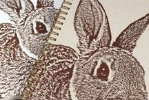 ()() Bunny Books, Cards ... / Bunny rabbit books, notebooks, journals, bookmarks, note cards and greeting cards, paper products, postage / by Rabbittude Buntique