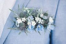 Color | Baby Blues / Baby blues ... beautiful pastel blues for decorating, wardrobes, weddings ... icy and light blues, powder blue, robins egg, forget-me-not, aquamarine, Serenity blue is one of the Pantone 2016 colors ...
