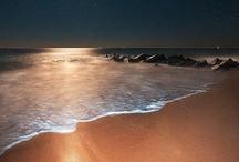 Beaches=Heaven