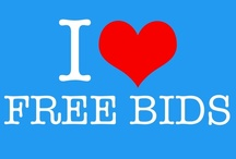 All about QuiBids