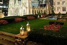 Gardens / by Halah Scimeca