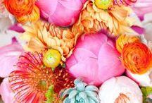 florals / by Allison Lewis