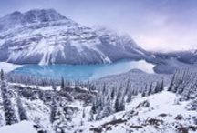 Canada / by Kristyn Coutts