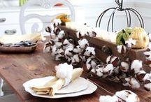 Seasonal: Fall/Winter / Fall and winter DIY decor ideas that are creative and beautiful!