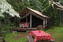 Camping / by Miranda Hayden