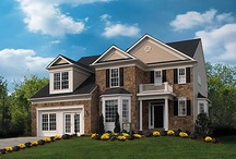 Augustine Homes / Augustine Homes is dedicated to translating your dreams and aspirations into homes and communities that meet your highest expectations. Join us from the shores of the Potomac to the vistas of the Blue Ridge mountains and discover the true potential Virginia holds for all of us. Wherever we build, you will find a harmonious quality of life we call Total Environments.