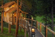 DESIGNS: Tree Houses / by Irene Kusters Berney