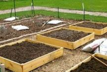 Square Foot Gardening / by 9 in a Garage